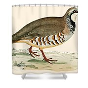 Red Legged Partridge Shower Curtain