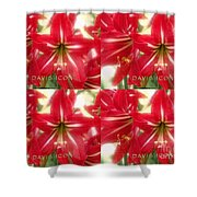 Red Lily Four Shower Curtain