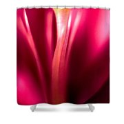 Red Lily  Shower Curtain