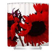 Red Lullaby Shower Curtain