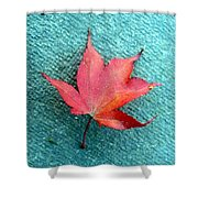 Red Maple Blue Shower Curtain