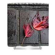 Red Maple Bricks Shower Curtain