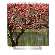 Red Maple Shower Curtain