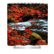 Red Maple Stream  Shower Curtain