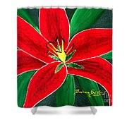 Red Oriental Daylily Shower Curtain