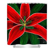 Red Oriental Lily Shower Curtain