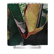 Red Palm Leaves Shower Curtain