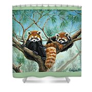 Red Pandas Shower Curtain