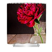 Red Peony Flower Vase Shower Curtain by Edward Fielding