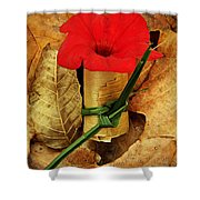 Red Petunia  Shower Curtain