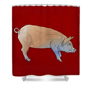 Red Pig Shower Curtain