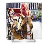 Red Plumes Shower Curtain