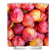 Red Plums Shower Curtain