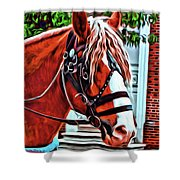 Red Pony Shower Curtain