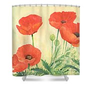 Red Poppies 3 Colorful Watercolor Poppy Floral Original Art Flowers Garden Artist K. Joann Russell Shower Curtain