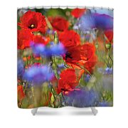 Red Poppies In The Maedow Shower Curtain