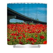 Red Poppy Field Near Highway Road Shower Curtain