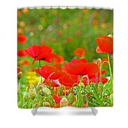 Red Poppy Flowers Meadow Art Prints Shower Curtain