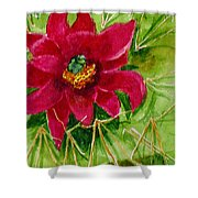 Red Prickly Pear Shower Curtain