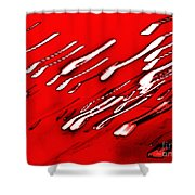 Red Racers Shower Curtain