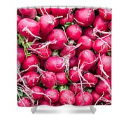Red Radishes  Shower Curtain