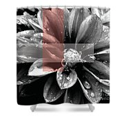 Red Rain Blossom Shower Curtain