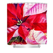 Red Red Christmas Shower Curtain