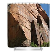 Red Red Rock Shower Curtain