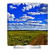 Red Road Shower Curtain