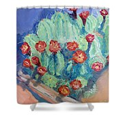 Red Rock Beauty Shower Curtain