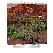 Red Rock Butte And Juniper Snag Paria Canyon Utah Shower Curtain