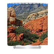 Red Rock Canyon 6 Shower Curtain