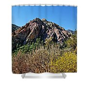 Red Rock Canyon With Foliage Shower Curtain