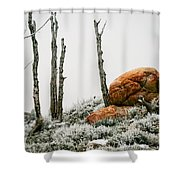 Red Rock Frost - Green Mountain - Wyoming Shower Curtain
