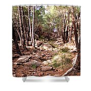 Red Rock Pine Forest Shower Curtain