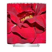 Crimson Blush 1.2 Shower Curtain