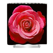 Red Rose On Black Shower Curtain