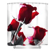 Red Rose Color Block 2 Shower Curtain
