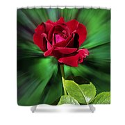 Red Rose Green Background Shower Curtain