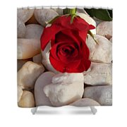Red Rose On River Rocks Shower Curtain