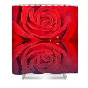 Red Rose Reflects Shower Curtain