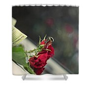 Red Roses And Visitor Shower Curtain