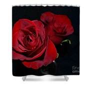 Red Roses For A Blue Lady Shower Curtain
