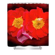 Red Roses Heart Shower Curtain