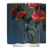 Red Roses In A Vase Shower Curtain