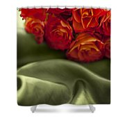 Red Roses On Green Silk Shower Curtain