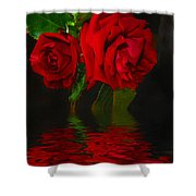 Red Roses Reflected Shower Curtain