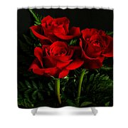 Red Roses Shower Curtain by Sandy Keeton