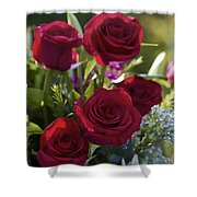 Red Roses The Language Of Love Shower Curtain