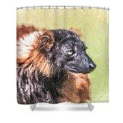 Red-ruffed Lemur Shower Curtain